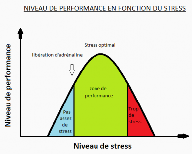 3.stress