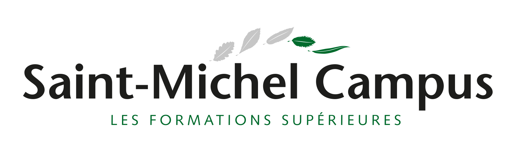 Logo Saint-Michel Campus